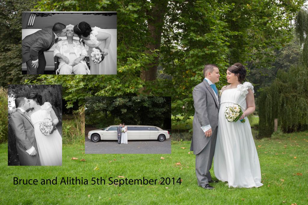 Historic Wedding Gallery – 2014