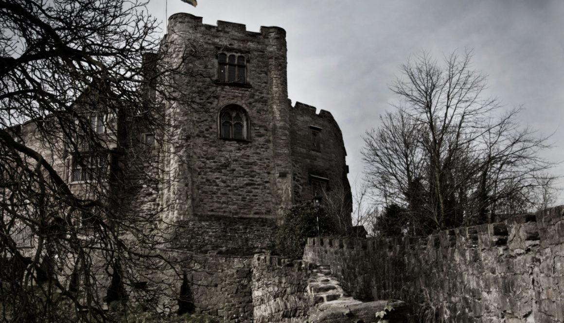 castle5_edited-1